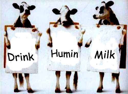 DrinkHuminMilk