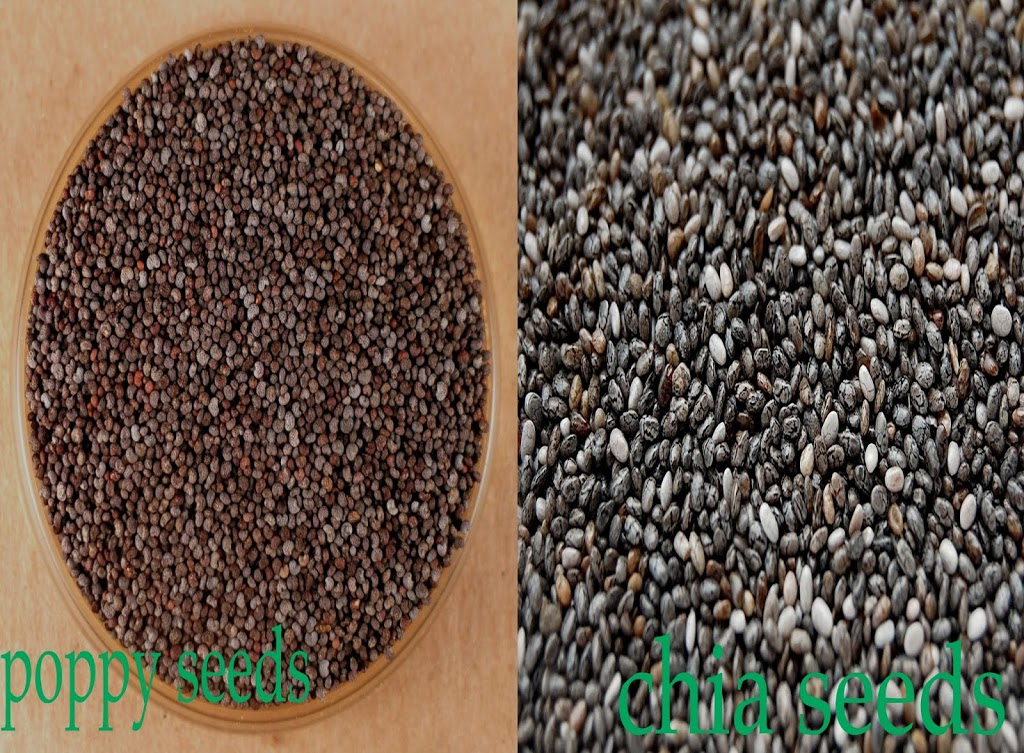 poppy_seeds_vs_chia_seeds