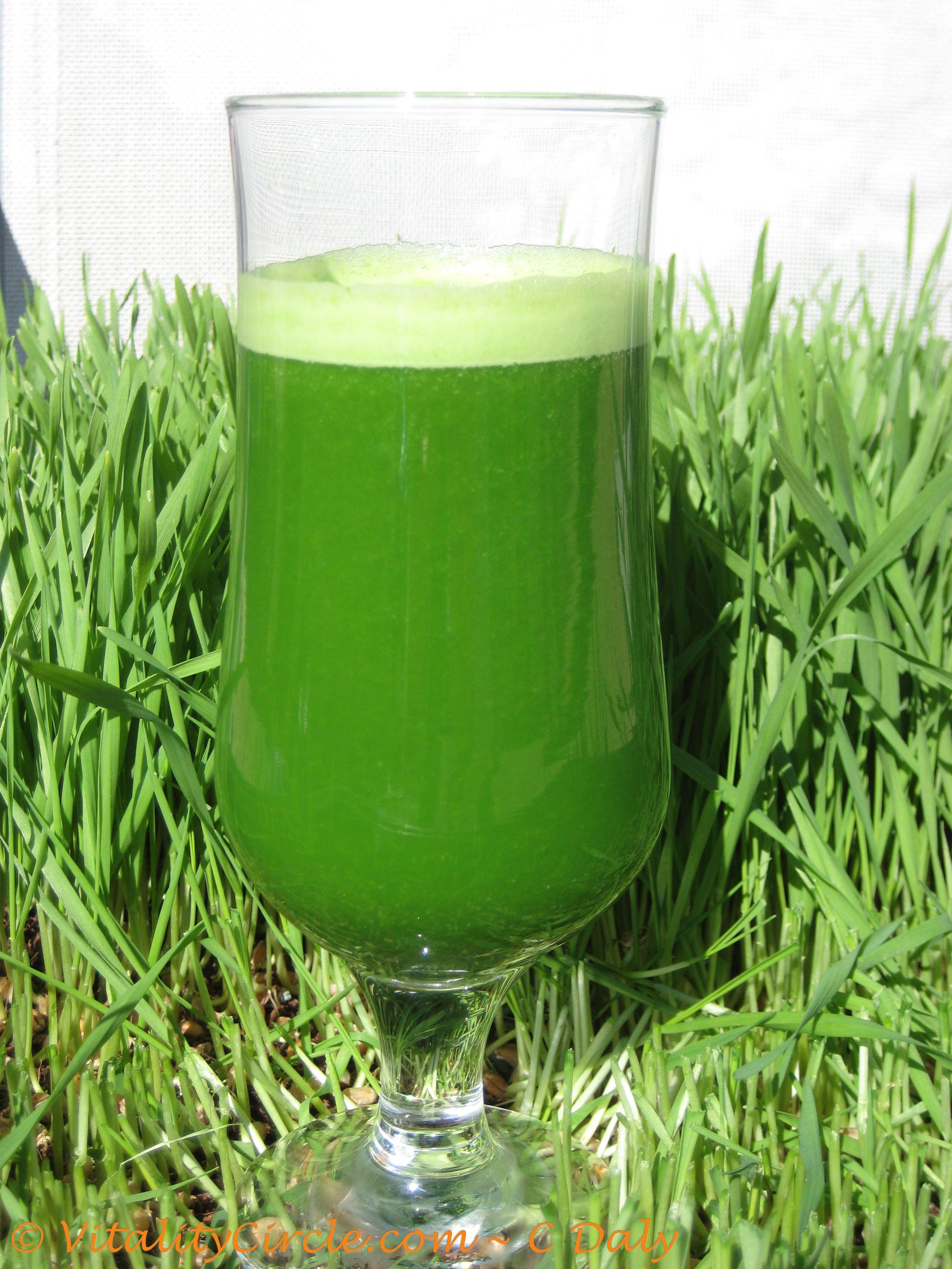 Fresh-wheatgrass-juice1