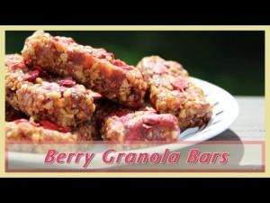 raw berry granola bar