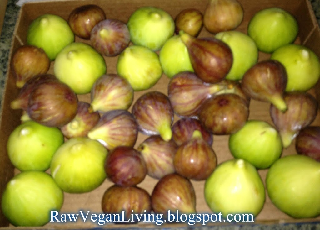 figs-named