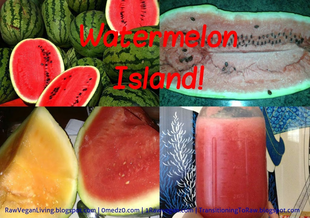 watermelon-2Bisland-2Bcollage