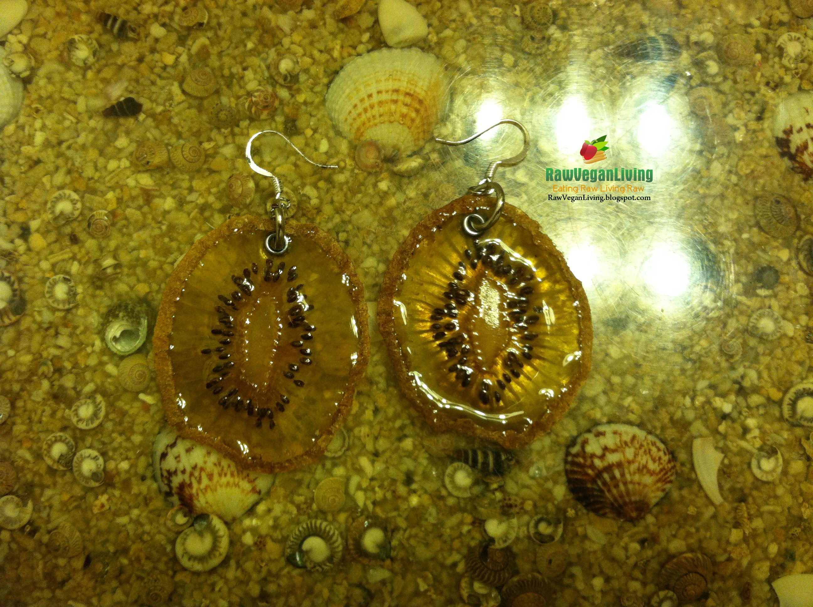 pair_of_kiwi_earrings