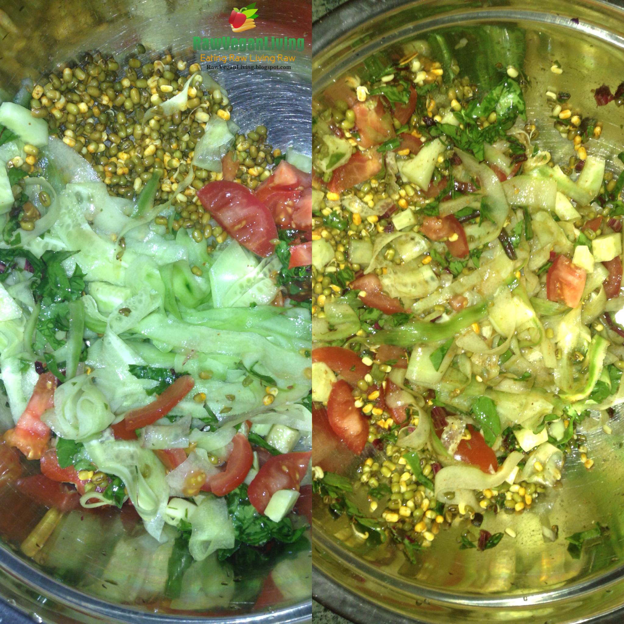 raw_vegan_saald_recipe_collage