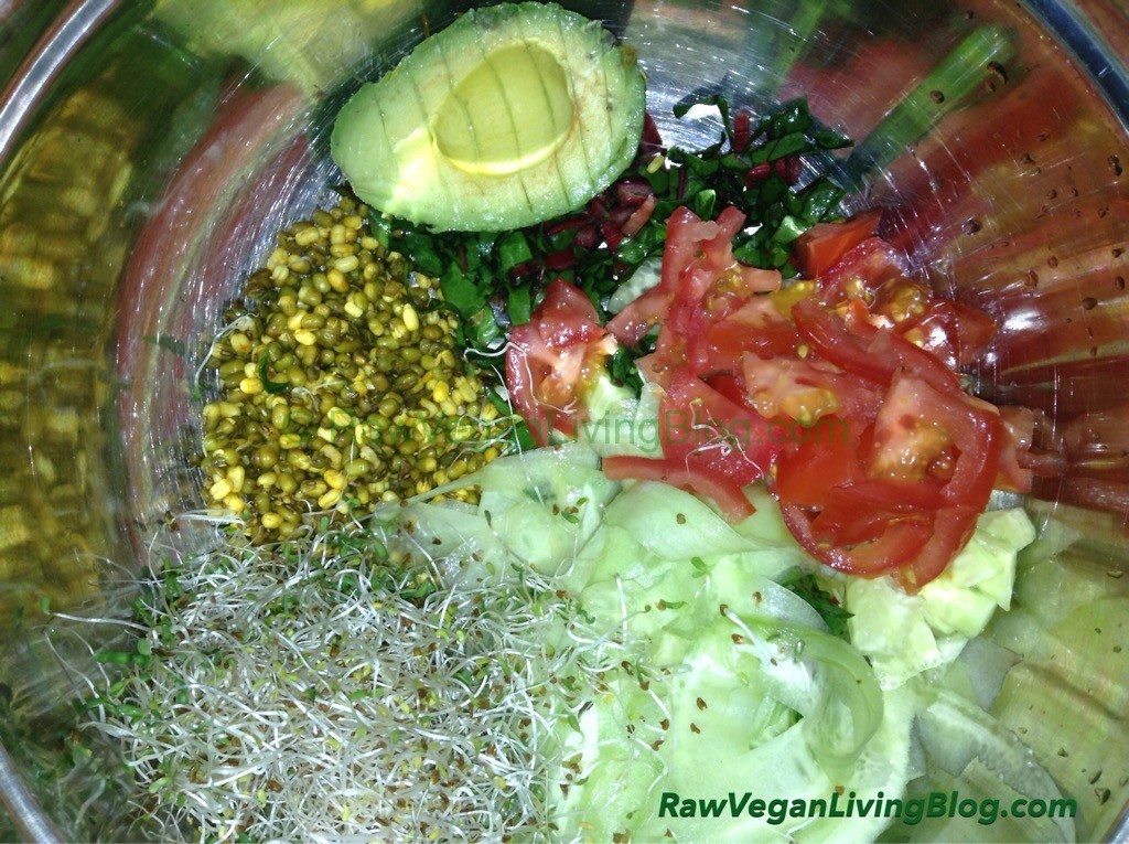 raw-vegan-cucumber-noodles-avocado-mung-bean-salad