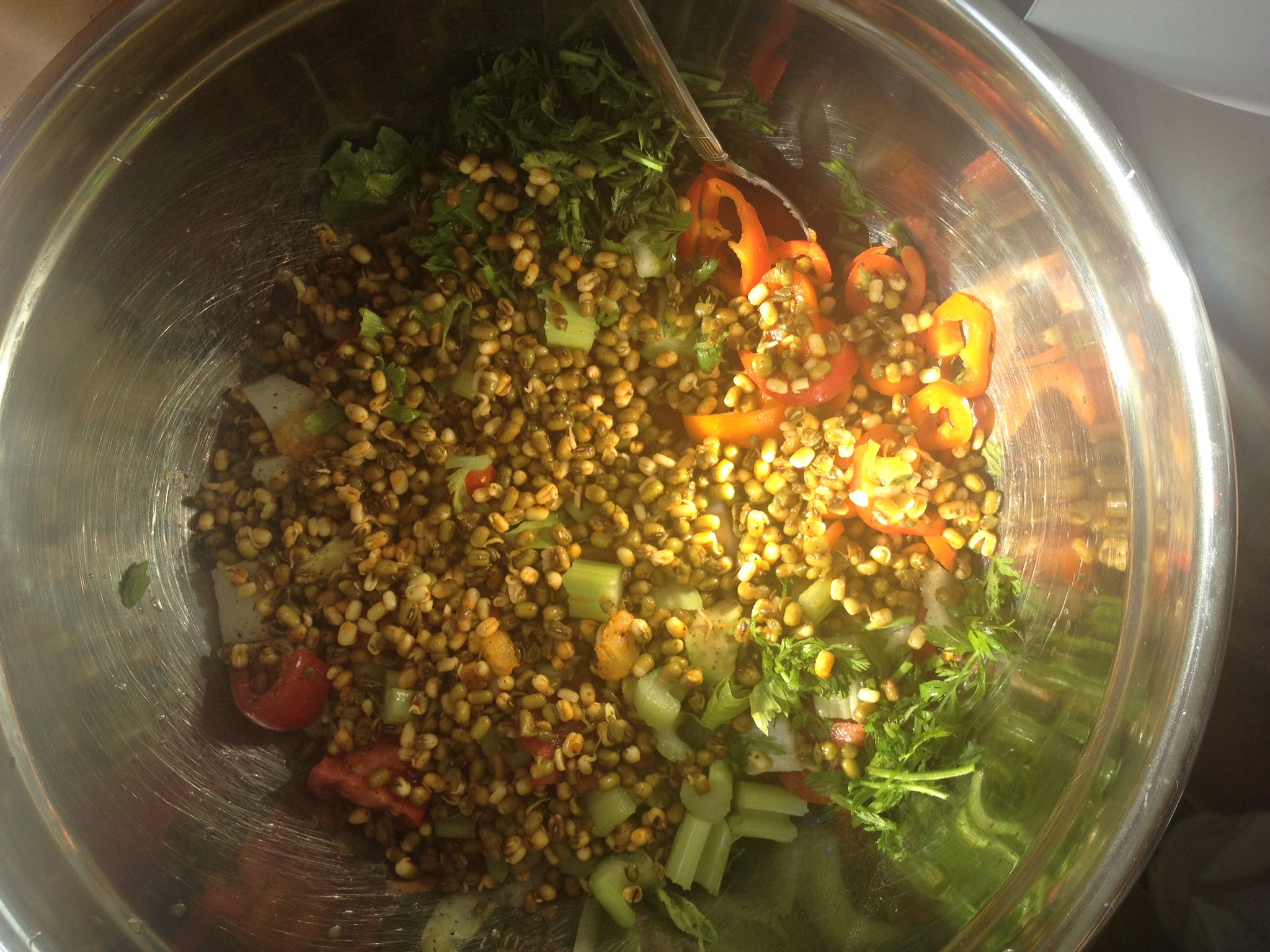 raw-vegan-sprouted-mung-bean-salad