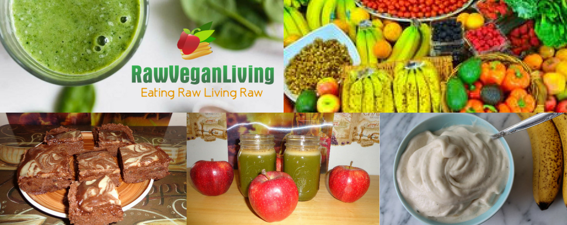 Welcome To Raw Vegan Living Blog