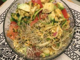 Raw vegan living blog a 100 plant based blog sharing healthy amazing raw food creamy zucchini noodle salad recipe forumfinder Image collections